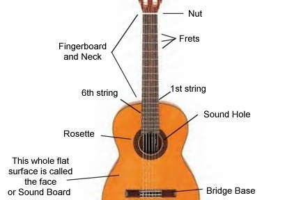 Parts Of A Classical Guitar Diagram Wiring Library