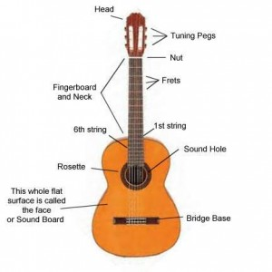 classical guitar parts diagram classical guitar lesson in london with marco cirillo tailored. Black Bedroom Furniture Sets. Home Design Ideas